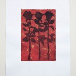 "ROSES sugar lift, chine colle 30"" x 22"""